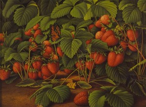 Levi-Wells-Prentice-xx-Bed-of-Strawberries-with-Monarch-Butterfly-xx-Private-collection