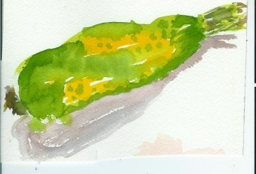 medium_speckled_zucchini