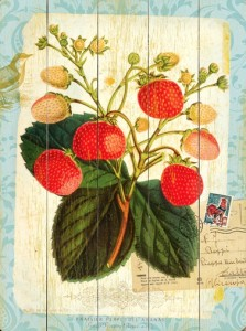 TC-WS-0003-0449-Natural--Wonders-Strawberry-artwork-art-wood-sign-
